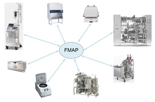 FMAP Standart
